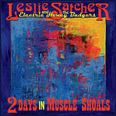 2 Days in Muscle Shoals von Leslie Satcher and the Electric Honey Badgers