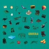 Eu Preciso De Um Liquidificador by Graveola
