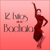12 Éxitos de la Bachata de Various Artists