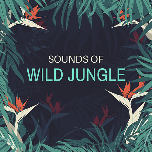 Sounds of Wild Jungle by Native American Flute