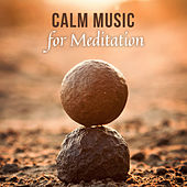 Calm Music for Meditation van Zen Meditation and Natural White Noise and New Age Deep Massage