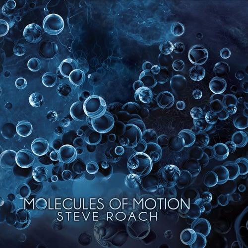 Molecules of Motion by Steve Roach