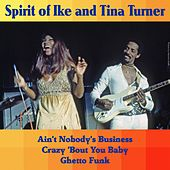 Spirit of Ike & Tina Turner de Ike and Tina Turner