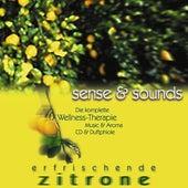 Erfrischende Zitrone de Various Artists