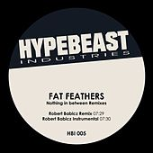 Nothing in Between (Robert Babicz Remixes) by Fat Feathers