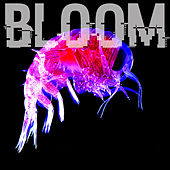 There's Nothing Like A Good Time But This Is Nothing Like A Good Time by Bloom
