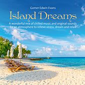 Island Dreams (A wonderful mix of chilled music and original sounds for an atmosphere to relieve stress, dream and relax) de Gomer Edwin Evans