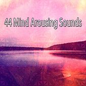 44 Mind Arousing Sounds de Nature Sounds Artists