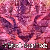 47 Naturally Neutral Tracks von Best Relaxing SPA Music