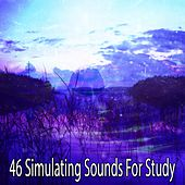 46 Simulating Sounds For Study by Classical Study Music (1)