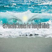45 Peaceful Sounds For Tranquil Minds de Meditación Música Ambiente