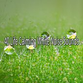 40 Life Calming White Noise Sounds von Entspannungsmusik