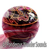 42 Ponderous Wonder Sounds von Lullabies for Deep Meditation