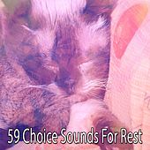59 Choice Sounds For Rest by All Night Sleeping Songs To Help You Relax