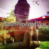 42 Exam Preperation Tracks von Music For Meditation
