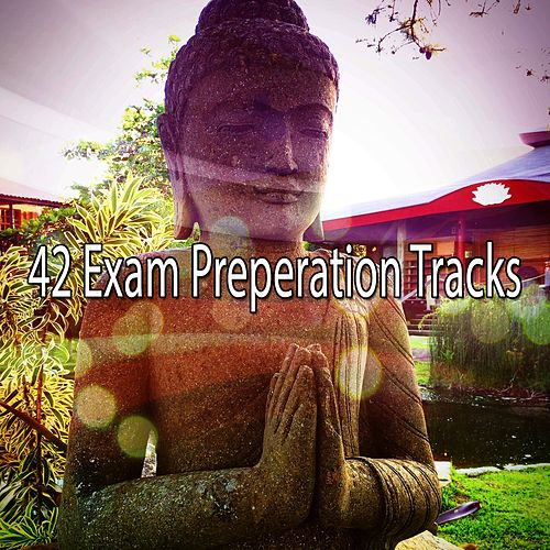 42 Exam Preperation Tracks by Music For Meditation