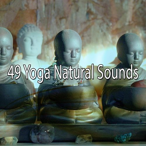 49 Yoga Natural Sounds de Yoga Music