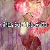67 Natural Sounds To Inspire Relaxation von Relajacion Del Mar