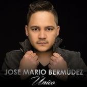 Único de Jose Mario Bermúdez