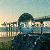 41 Studying Sounds by Classical Study Music (1)