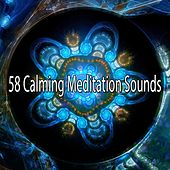 58 Calming Meditation Sounds de Zen Meditate