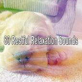 80 Restful Relaxation Sounds by Baby Sleep Sleep