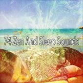 74 Zen And Sleep Sounds de Sounds Of Nature