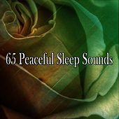 65 Peaceful Sleep Sounds von Rockabye Lullaby