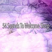 54 Sounds To Welcome Sleep de White Noise Babies