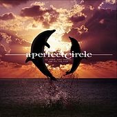 So Long, And Thanks For All The Fish by A Perfect Circle