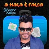 A Mala É Falsa von Silvanno Salles