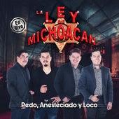 Pedo, Anesteciado y Loco van La Ley De Michoacan