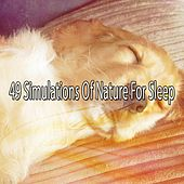 49 Simulations Of Nature For Sleep by Ocean Sounds Collection (1)