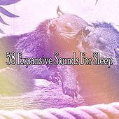 58 Expansive Sounds For Sleep by Ocean Sounds Collection (1)