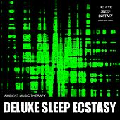 Deluxe Sleep Ecstasy de Ambient Music Therapy