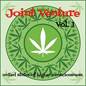 Joint Venture, Vol. 1: United States of Higher Consciousness by Various Artists
