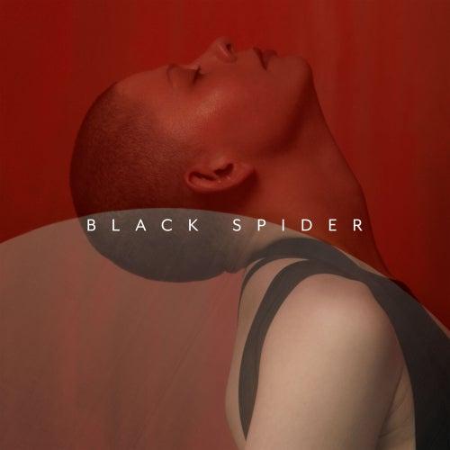 Black Spider van Kovacs