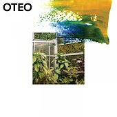 Pink Ties von Oteo