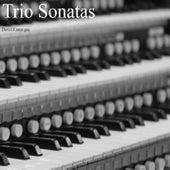 Trio Sonatas by David Ennarqua