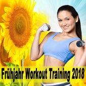 Frühjahr Workout Training 2018 (Die besten Songs zum Trainieren. Die perfekte Workout-Playlist beinhaltet kräftige Beats, die einen zu neuen Höchstleistungen pusht) & DJ Mix de EDM Workout DJ Team