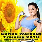 Spring Workout Training 2018 (Intense Full Body Workout & Circuit Training) & DJ Mix de EDM Workout DJ Team
