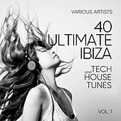 Ibiza (40 Ultimate Tech and House Tunes), Vol. 1 de Various Artists