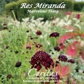 Res Miranda de Various Artists