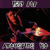 Acoustics KO by Iggy Pop