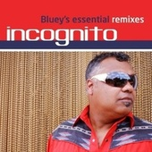 Bluey's Essential Remixes by Incognito