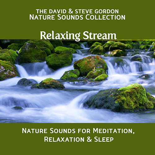 Relaxing Stream: Nature Sounds for Meditation, Relaxation and Sleep by David and Steve Gordon