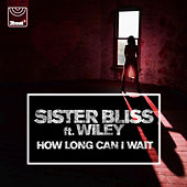 How Long Can I Wait de Sister Bliss