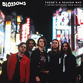 There's A Reason Why (I Never Returned Your Calls) de Blossoms