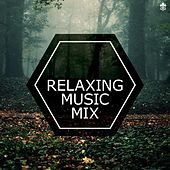 Relaxing Music Mix by Various Artists