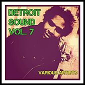 Detroit Sound, Vol. 7 by Various Artists